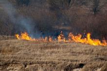 Apel wójta o zaniechanie wypalania traw