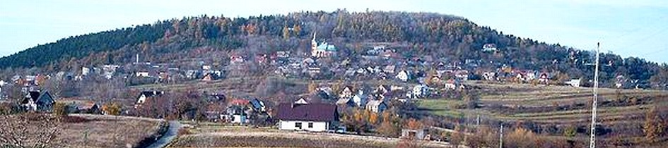 informacja dot. przewozów pasażerskich na trasie Stryszów – Kraków przez Lanckoronę
