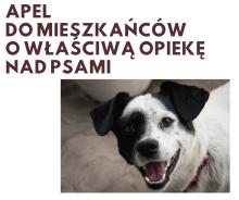 apel do mieszkańców o właściwą opiekę nad psami